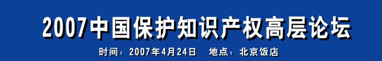 2007中国保护知识产权高层论坛