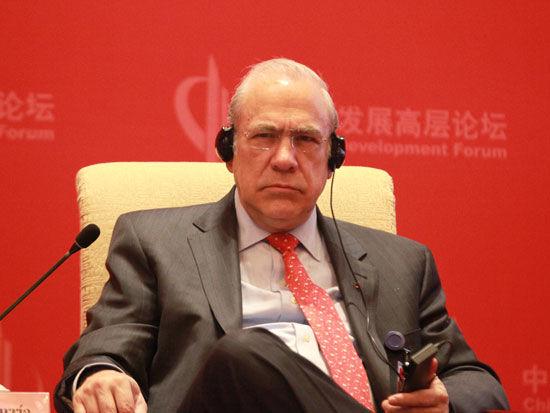 中国经济合作与发展组织秘书长古利亚