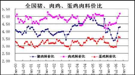 市场展望:玉米市场强势上涨长期牛市才刚起步(2)