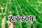 农业60年
