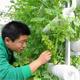 明年农村工作主题锁定农业科技