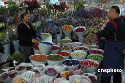 雪灾导致运价上涨云南鲜花外销价格上涨十倍
