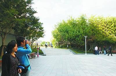 釜山和福冈 动静相宜姐妹城
