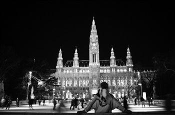 冰封维也纳:冷艳倾城(组图)