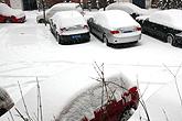 私家车全被雪覆盖