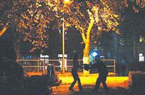 劫匪潜藏高校树林夜劫女生