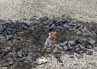 村民独自一人挖地8天找水