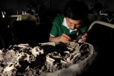 新京报:寻找恐龙化石