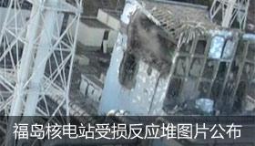 福岛核电站受损反应堆图片公布