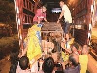 女子在玉林花9万余元买360条狗运回天津