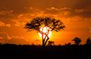 夏末肯尼亚秘境