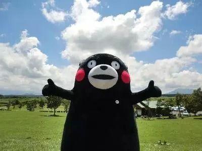 熊本县的吉祥物――kumamon 熊本熊