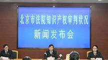 北京市法院知识产权审判状况新闻发布会