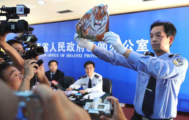 """周正龙拍摄的""""华南虎""""照片是一个用老虎画"""