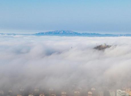 有仙气!青岛平流雾,美如仙境