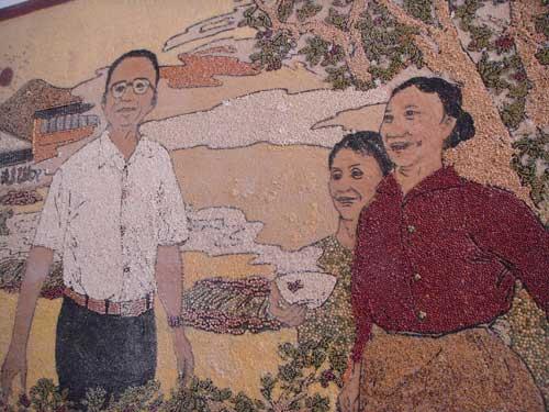 粮食粘贴画图片大全-灾区的枣树精神 有手有脚有条命,天大的困难能