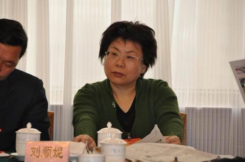 武汉副市长建议对网络内容进行分级管理