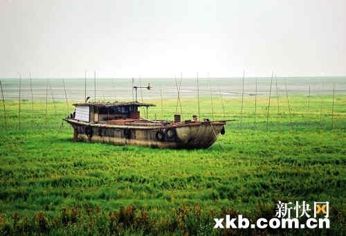 南矶乡,一艘大渔船搁浅在鄱阳湖湖底草坪上。