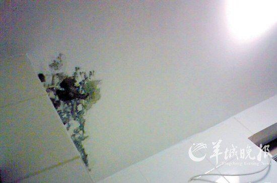 龙光峰景华庭业主论坛上,一位业主发图投诉天花板渗水等质量问题