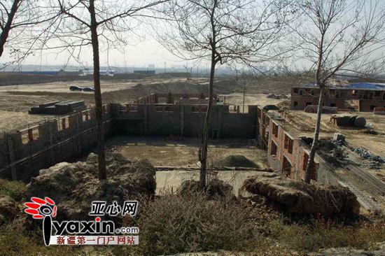 新疆乌鲁木齐市卡子湾村600亩山林被挖秃建厂
