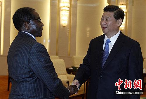 11月16日下午,中国国家副主席习近平在北京人民大会堂会见87岁的津巴布韦总统穆加贝。中新社发 任晨鸣 摄
