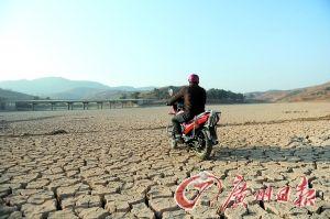 石林县新坝水库已经完全干枯,村民可以骑摩托车穿越库区。记者乔军伟 摄