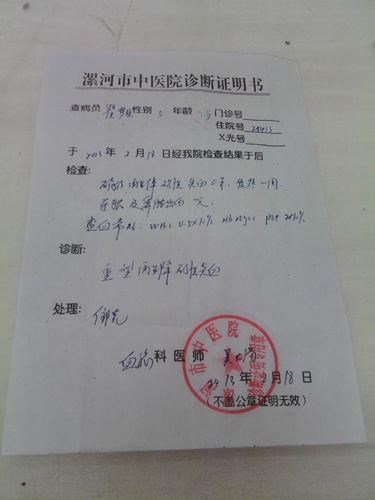 云南政府公函