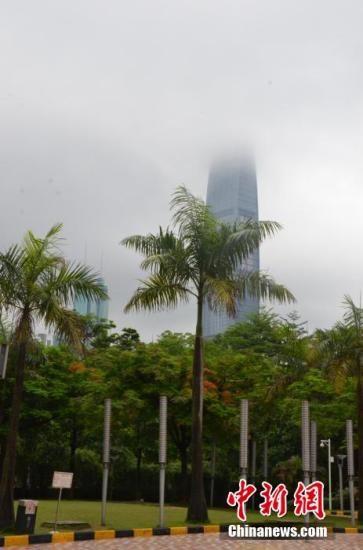 5月13日上午,暴雨又袭深圳,深圳满城被浓雾笼罩。深圳气象台13日09时10分发布暴雨黄色预警,预计3小时内将出现50毫米的降雨。中新社发 郑小红 摄