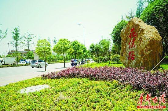 """长沙市花侯路口,绿色扑入眼帘,多年前,这里还是""""灰尘与泥土齐飞""""。本组图片均由记者 李健 摄"""