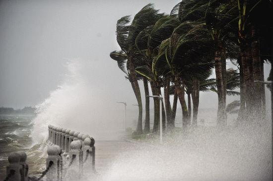 抗击最强台风 湛江如何创下零死亡奇迹?