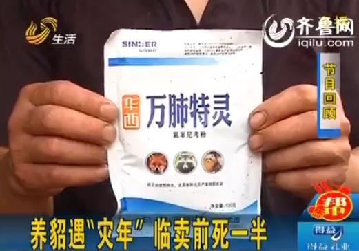 潍坊上千只水貂服兽药后死亡畜牧局:药全部下架