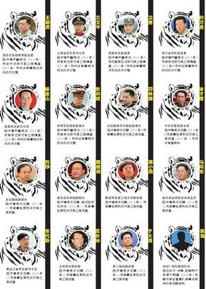 """2014年,军方打掉16只""""老虎"""""""