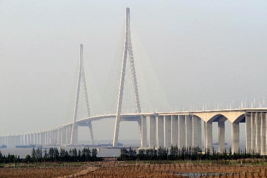 图文:(经济)(1)苏通大桥展雄姿