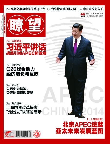 《瞭望》第46期封面