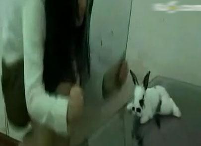 长发美女边笑边将兔子活活坐死引网友愤怒组图