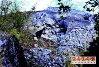 喜马拉雅塔尔羊 科考队供图