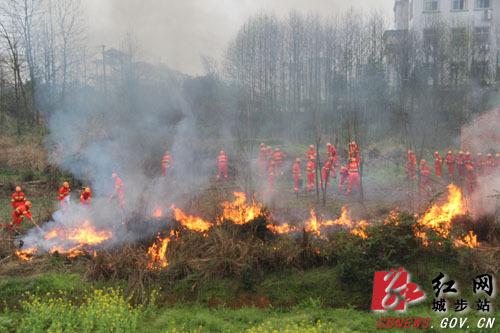 邵阳市森林防火培训班在城步举行视频枪打鱼图片
