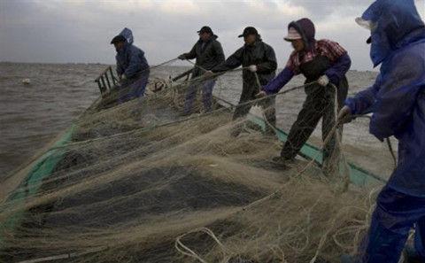 图片来源:Qiu Bo \Greenpeace