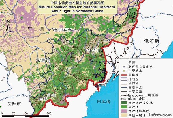 地�_东北虎在中国的潜在栖息地分布图 (wwf/图)