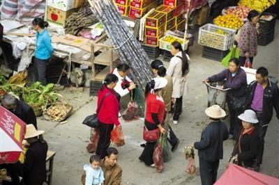 市场里有很多人贩卖候鸟