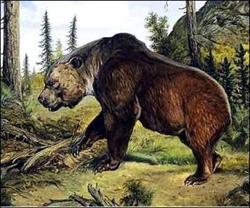 史前动物最大第一名
