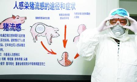 猪流感中国死了多少人