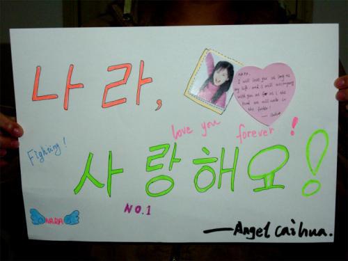 中国粉丝网上声援张娜拉 用韩文要其加油(图)