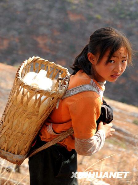 中国西南地区旱情严重云南受旱面积占全国过半