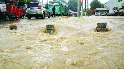 南京暴雨引发内涝导致居民家中游来大鱼