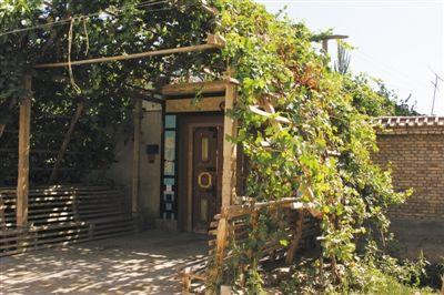 建筑沙漠里的绿色庭院(2)
