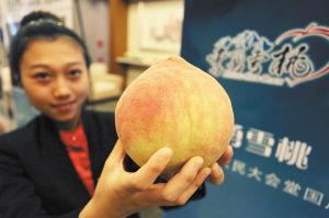 经农业部农产品质量监督检验测试中心检测,在39项指标中有33项优于其它著名的桃类品种7600个李勇雪桃四度进京国庆献礼