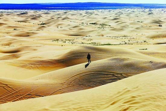 """沙漠""""驴行""""事故频发 谁该为生命埋单"""