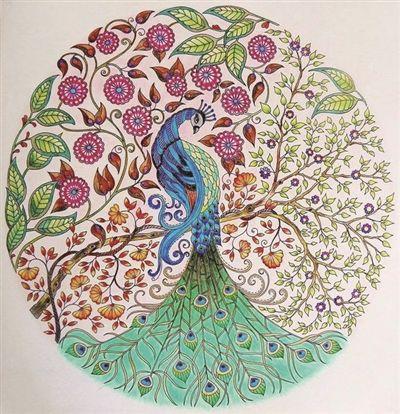 7262 - Secret garden coloring book for adults pdf ...