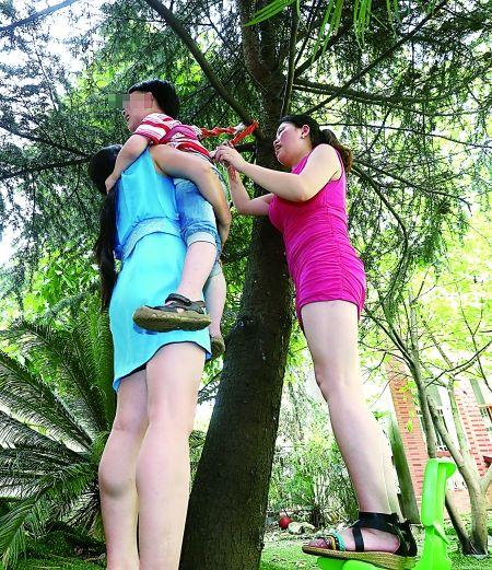 """恐高孩子""""吊""""树上练胆。"""